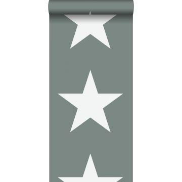 papel pintado estrellas verde grisáceo de ESTA home