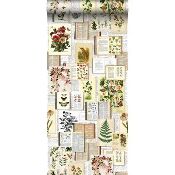 papel pintado XXL páginas de un libro botánico de flores y plantas beige crema claro, verde, marrón y amarillo ocre de ESTA home