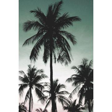 fotomural palmeras verde pertróleo de ESTA home