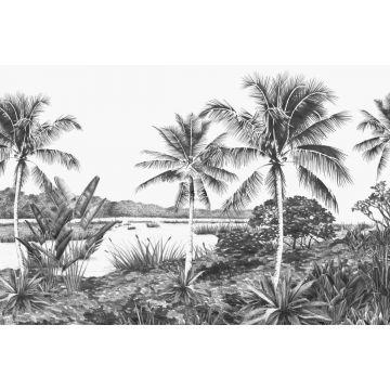 fotomural paisaje con palmeras negro y blanco de ESTA home