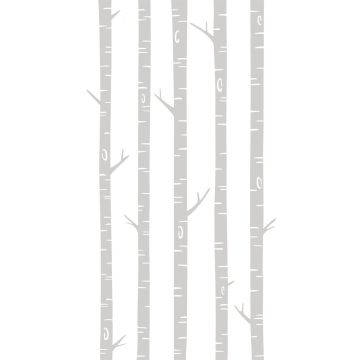 fotomural troncos de abedul gris de ESTA home