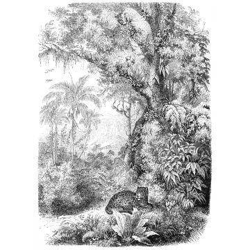 fotomural jungla blanco y negro de ESTA home