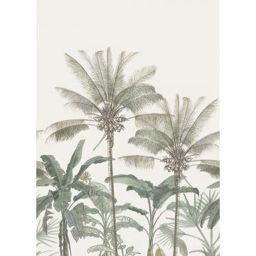 fotomural palmeras beige claro y verde grisáceo de ESTA home