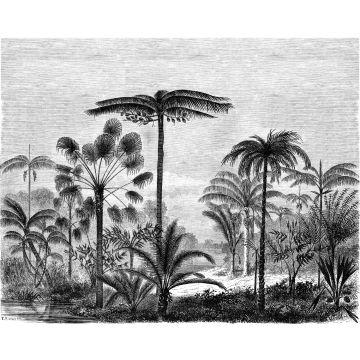 fotomural paisaje con palmeras blanco y negro de ESTA home