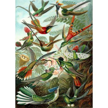 fotomural pájaros verde selva tropical de ESTA home