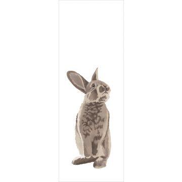 fotomural Conejo marrón de ESTA home