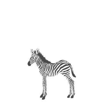 fotomural zebra blanco y negro de Origin