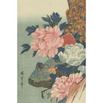 fotomural pavo real y peonías rosa viejo, verde y azul de Origin